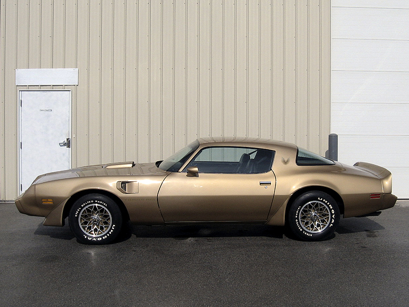 1981 PONTIAC TRANS AM 2 DOOR COUPE - Side Profile - 101702