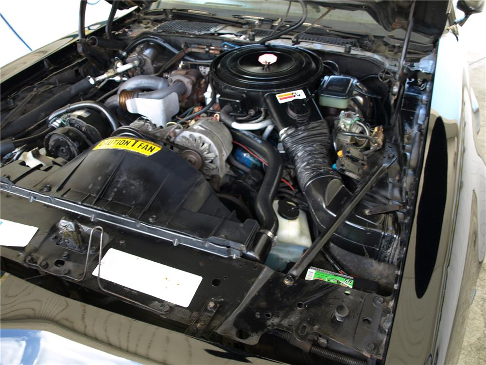 1981 PONTIAC FIREBIRD TRANS AM COUPE - Engine - 113091