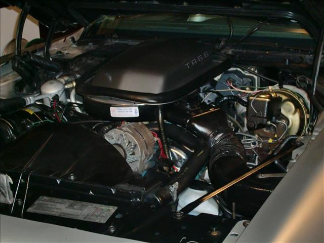 1979 PONTIAC TRANS AM 10TH ANNIVERSARY COUPE - Engine - 113430