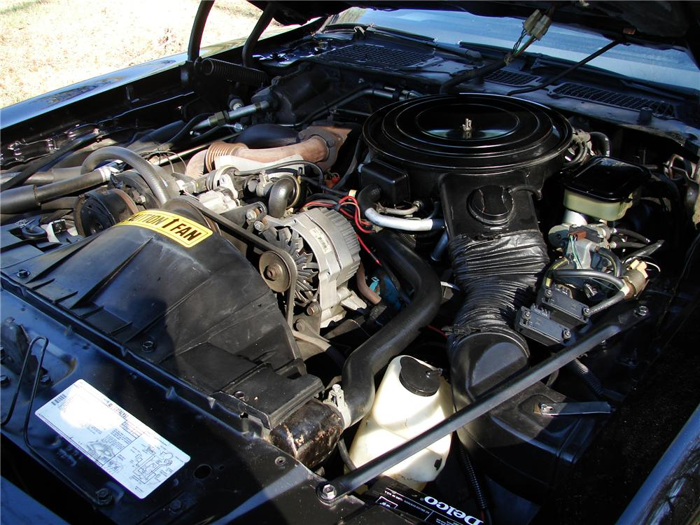 1981 PONTIAC TRANS AM 2 DOOR COUPE - Engine - 125836