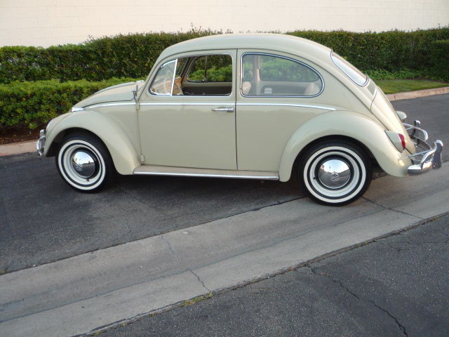 1965 VOLKSWAGEN BEETLE 2 DOOR SEDAN - Side Profile - 130355