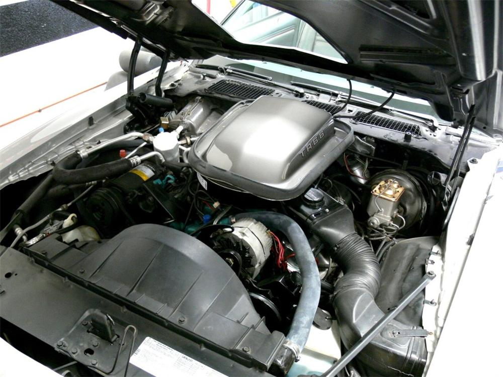 1979 PONTIAC TRANS AM 10TH ANNIVERSARY COUPE - Engine - 130394