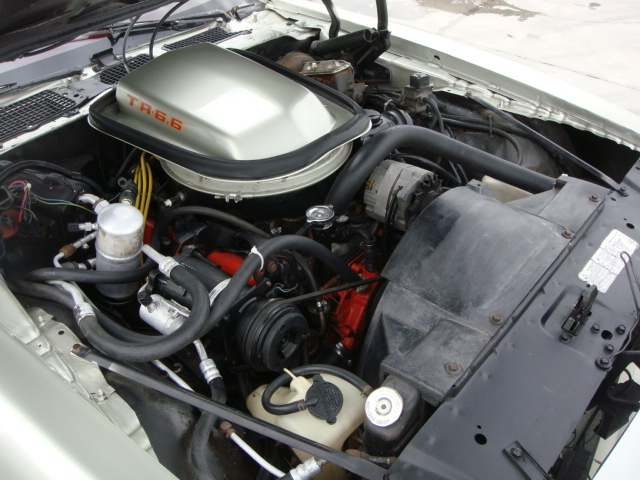1979 PONTIAC FIREBIRD TRANS AM 2 DOOR COUPE - Engine - 133211
