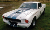 1965 FORD MUSTANG FASTBACK RACE CAR -  - 15564