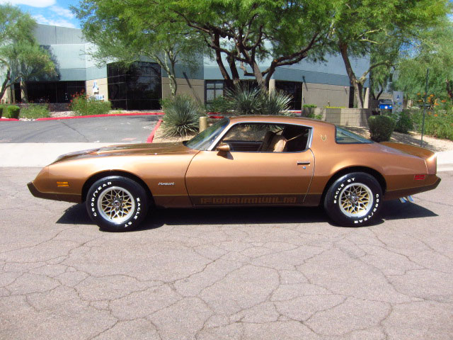 1979 PONTIAC FIREBIRD FORMULA 2 DOOR COUPE - Side Profile - 157902