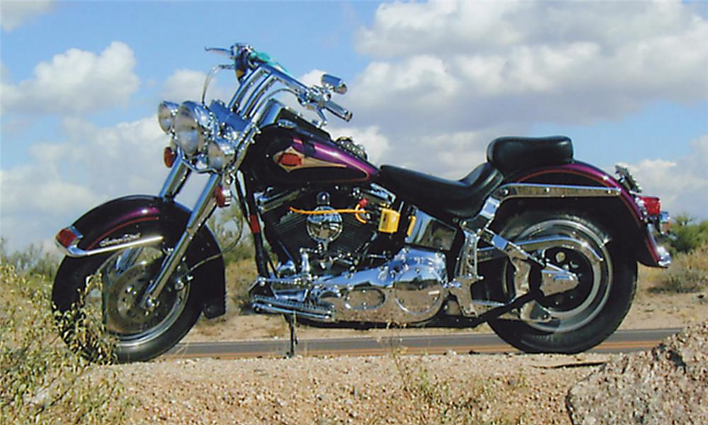 1996 HARLEY-DAVIDSON SOFTAIL CLASSIC MOTORCYCLE - Interior - 15976