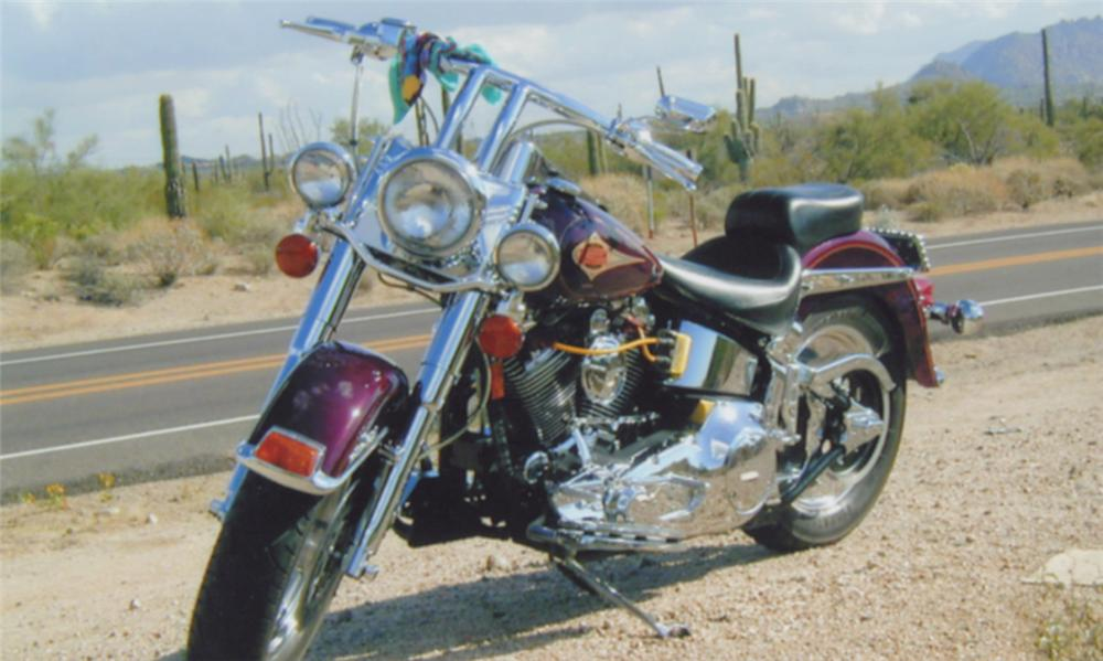 1996 HARLEY-DAVIDSON SOFTAIL CLASSIC MOTORCYCLE - Side Profile - 15976