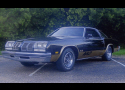 1977 OLDSMOBILE CUTLASS 442 COUPE -  - 16120