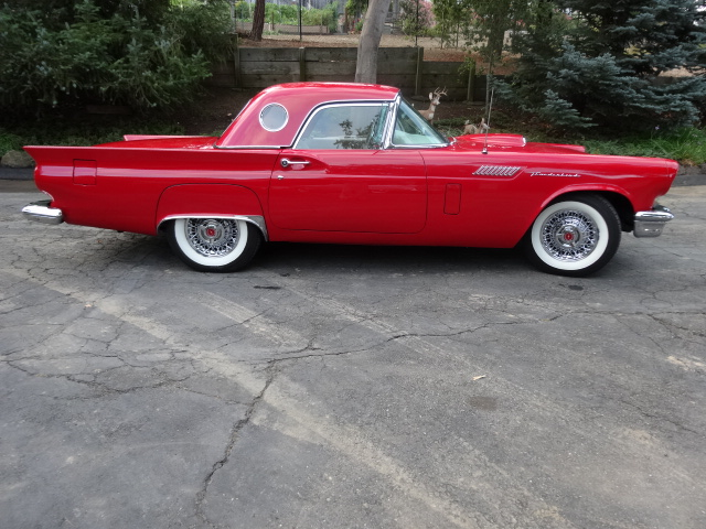 1957 FORD THUNDERBIRD E CONVERTIBLE - Side Profile - 161956