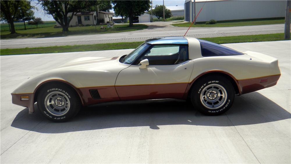 1981 CHEVROLET CORVETTE 2 DOOR COUPE - Side Profile - 161987
