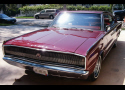 1966 DODGE HEMI CHARGER 2 DOOR FASTBACK -  - 16242