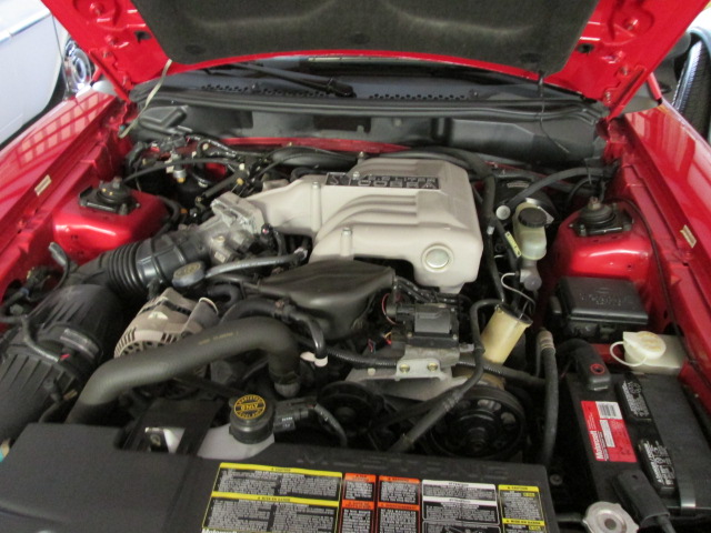1994 FORD MUSTANG COBRA CONVERTIBLE - Engine - 170256