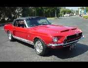 1968 SHELBY GT500 CONVERTIBLE -  - 17728