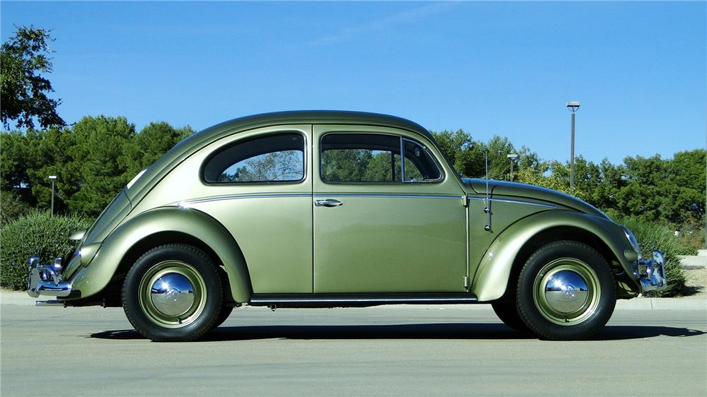 1956 VOLKSWAGEN BEETLE SEDAN - Side Profile - 180871