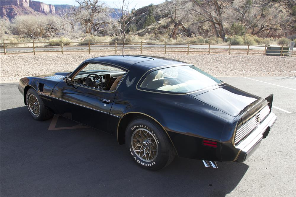 1981 PONTIAC FIREBIRD TRANS AM - Side Profile - 181373