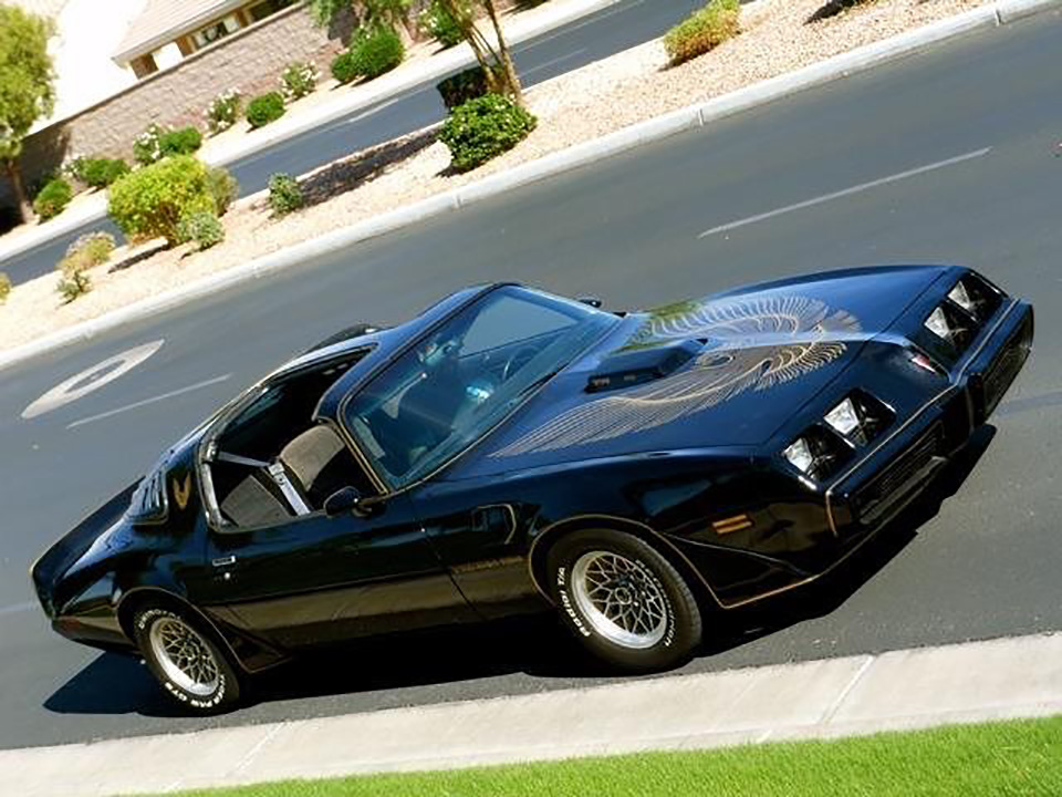 1981 PONTIAC TRANS AM - Side Profile - 181383