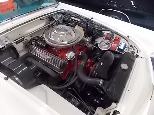 1956 FORD THUNDERBIRD  - Engine - 181698