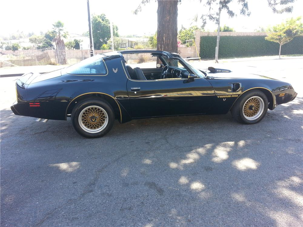 1979 PONTIAC FIREBIRD TRANS AM - Side Profile - 181809