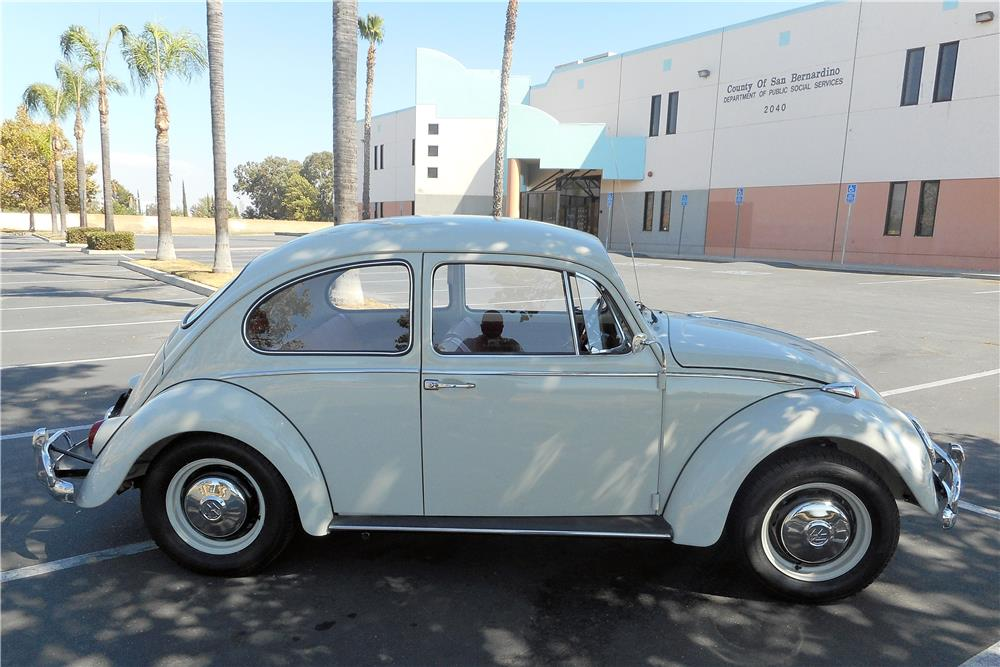 1966 VOLKSWAGEN BEETLE  - Side Profile - 186987