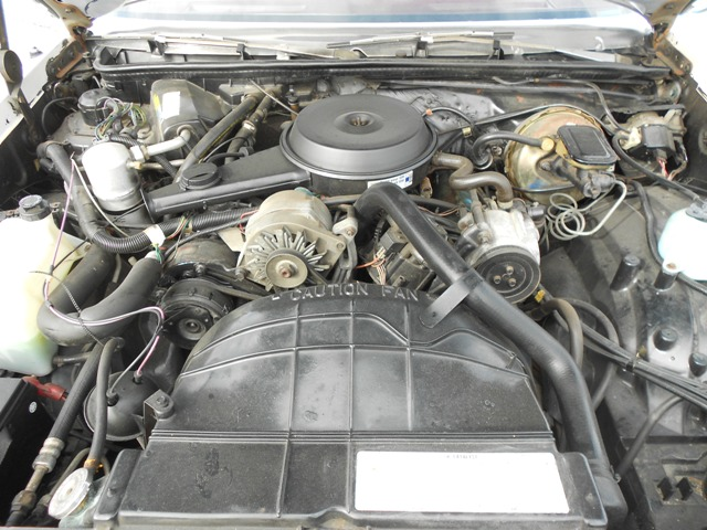 1981 OLDSMOBILE CUTLASS COUPE - Engine - 187580