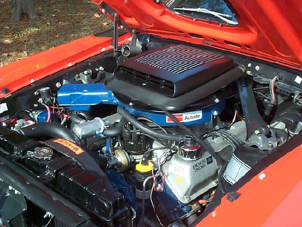 1970 FORD MUSTANG BOSS 302 FASTBACK - Engine - 19265