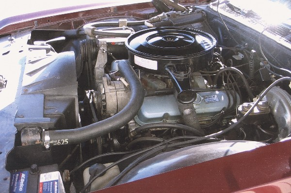 1969 PONTIAC CATALINA COUPE - Engine - 19383