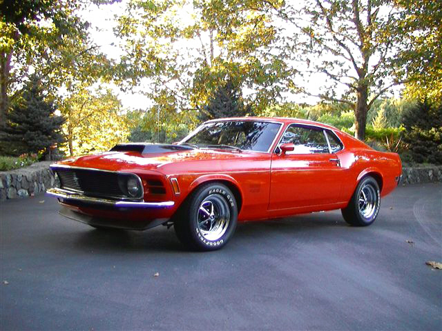 1970 FORD MUSTANG BOSS 429 FASTBACK - Side Profile - 20129