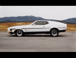 1973 FORD MUSTANG MACH 1 FASTBACK -  - 20566