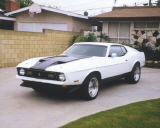 1971 FORD MUSTANG MACH 1 FASTBACK -  - 20791