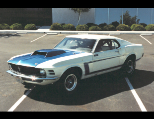 "1969 FORD MUSTANG ""FORD TEAM"" DRAG CAR -  - 21999"