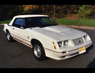 1984 FORD MUSTANG GT 350 CONVERTIBLE -  - 22438
