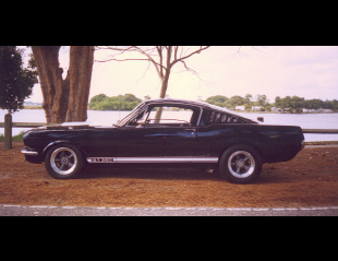 1965 FORD MUSTANG SHELBY GT350 RE-CREATION -  - 23693