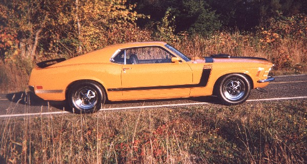 1970 FORD MUSTANG BOSS 302 UNKNOWN - Side Profile - 24459