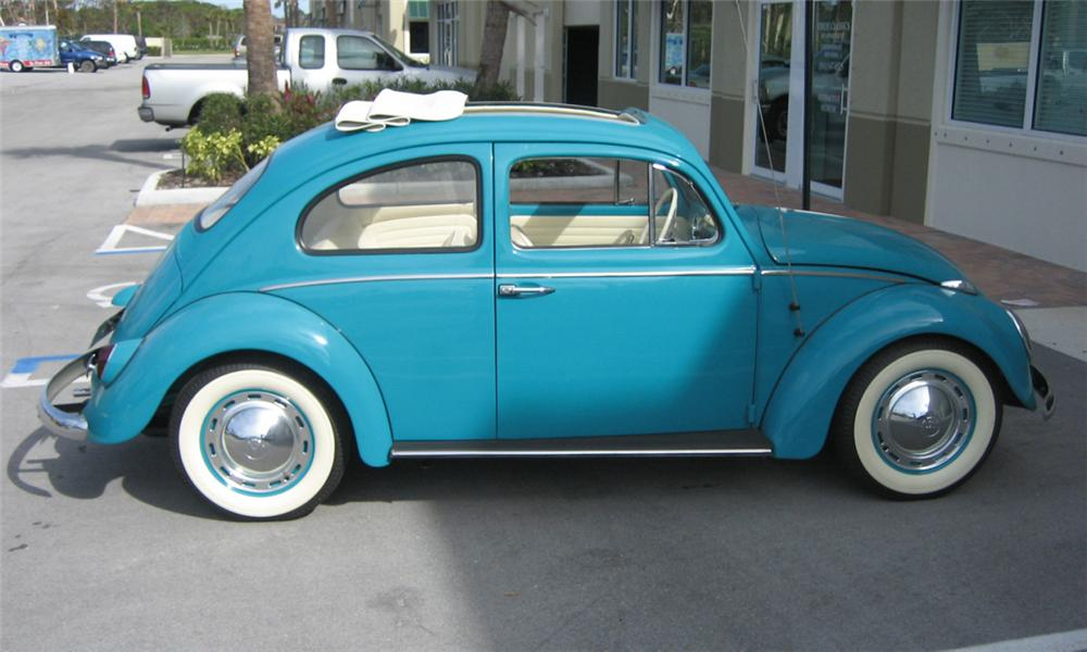 1962 VOLKSWAGEN BEETLE COUPE - Side Profile - 40232