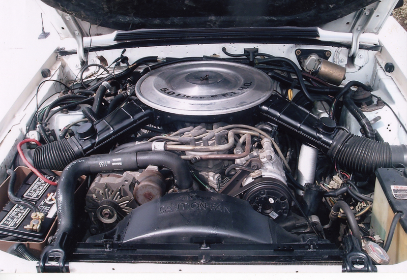 1984 FORD MUSTANG CONVERTIBLE - Engine - 43930