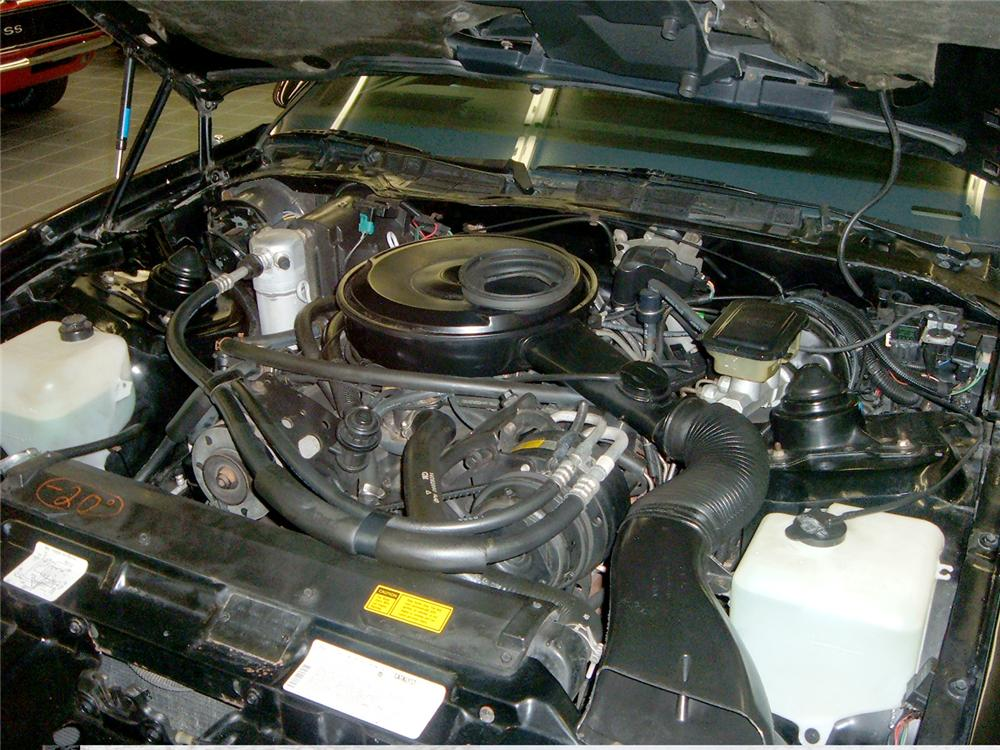 1984 PONTIAC TRANS AM COUPE - Engine - 49655