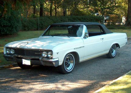 1965 buick skylark - Lookup BeforeBuying