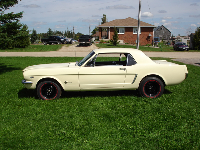 1965 FORD MUSTANG COUPE - Side Profile - 70845