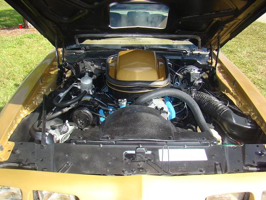 1979 PONTIAC TRANS AM COUPE - Engine - 88913