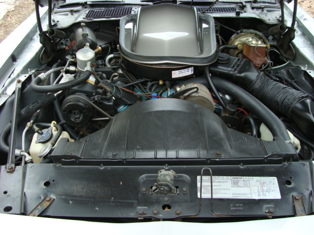 1979 PONTIAC TRANS AM COUPE - Engine - 89317