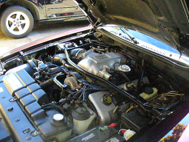1996 FORD MUSTANG COBRA COUPE - Engine - 94015