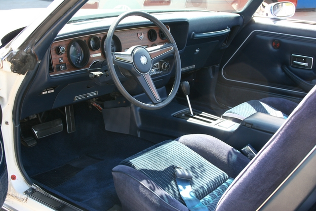 1981 PONTIAC FIREBIRD CONVERTIBLE - Interior - 96316