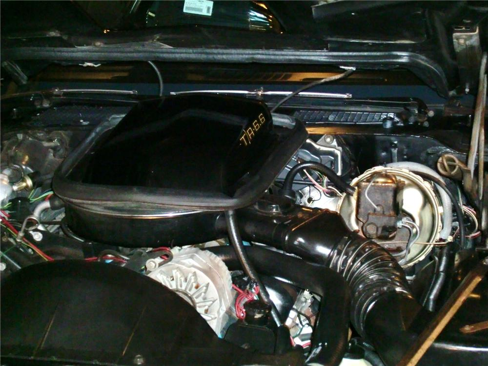 1979 PONTIAC FIREBIRD TRANS AM BANDIT COUPE - Engine - 97208