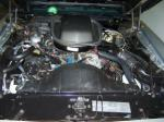1979 PONTIAC TRANS AM 10TH ANNIVERSARY EDITION COUPE - Engine - 102083