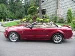 2005 FORD MUSTANG GT CUSTOM CONVERTIBLE - Side Profile - 113239