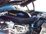1979 PONTIAC FIREBIRD TRANS AM COUPE - Engine - 117768