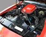 1979 PONTIAC FIREBIRD TRANS AM 2 DOOR COUPE - Engine - 132838