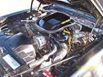 1979 PONTIAC TRANS AM COUPE - Engine - 137835
