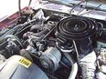 1981 PONTIAC FIREBIRD TRANS AM COUPE - Engine - 139139