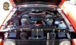1967 SHELBY GT500 FASTBACK - Engine - 15770